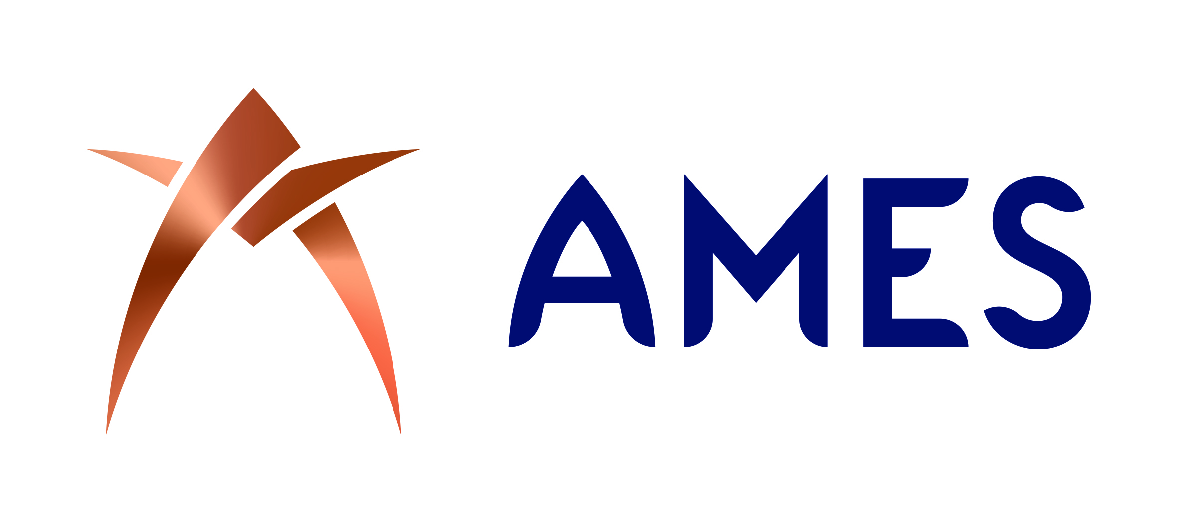 AMES (Aircraft Maintenance Engineering Services)